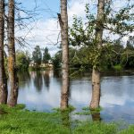 River & Surface Water Flooding Forecast For UK